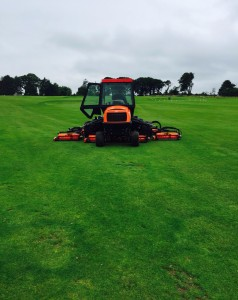 mallow fairway mower
